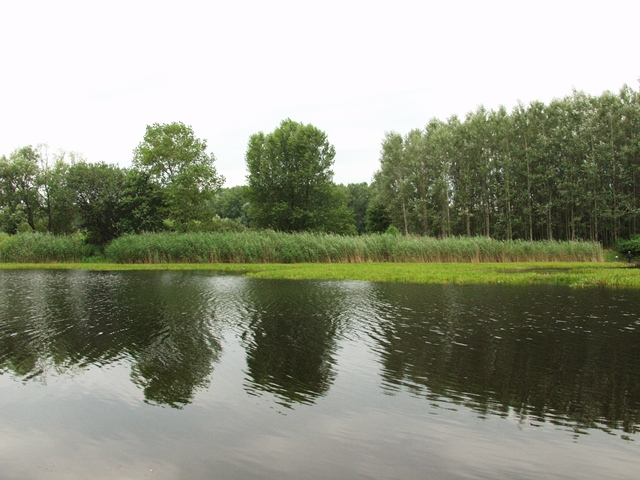 2005.-június-047jóműv