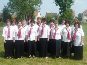Karcsaiak Karcsáért Egyesület 2008